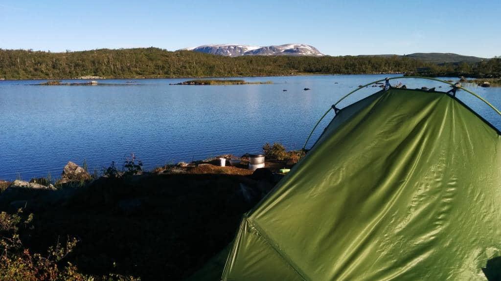 wildkamperen hardangervidda noorwegen